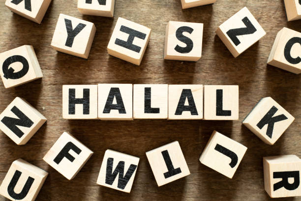 Scribble game says 'Halal'
